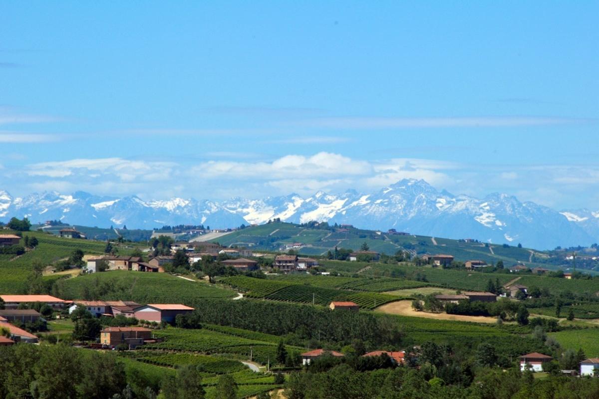 Il territorio di Costigliole d'Asti.